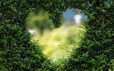 Полезни дентални съвети за св.Валентин